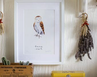 A4 Giclee Print 'Barn Owl' Illustration and Modern Calligraphy, Signed and Editioned by the Artist