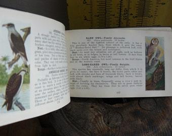 Vintage Bird Guide, Western Bird Guide, Rockies & Pacific, Vintage