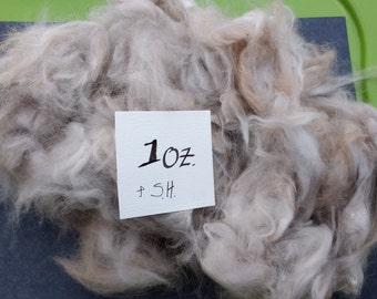 Angora rabbit fiber #2