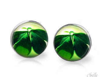 Earrings spring 34