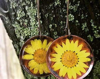 Handmade copper terrarium real yellow daisies preserved in resin earrings , bohemian , Mother's Day , love, nature , floral, flowers, gift,