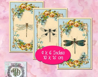 10 Dragonfly Tags