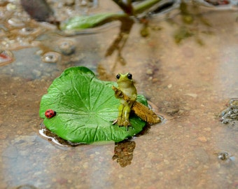 Fairy Garden  - Frog Rowing Lotus Leaf Boat With Ladybug - Miniature