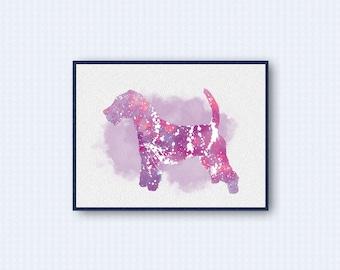 Lakeland Terrier Watercolor Poster