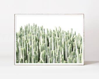 Cactus Wall Art cactus wall decor | etsy