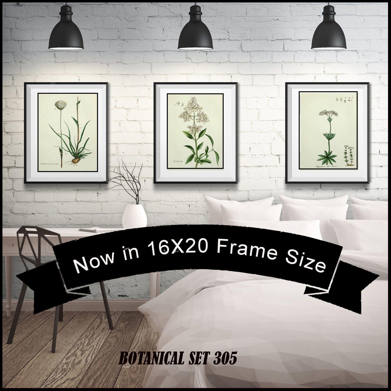 Set Of 3 White Flower Botanical Prints Matted And Framed