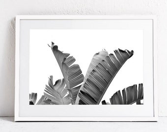 PRINTABLE WALL ART Print, Black and White Print Art, Nature Photography Download Print, Banana Leaf Art Tropical Art Large Modern Wall Print