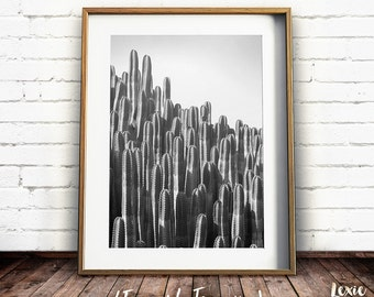 Black and White Cactus Print, Cactus Wall Art, South Western Print, Southwestern Decor, Printable Art