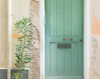 Green Door, Door, Sardinia, Italy, Sage, Doortraits, Plants, Fine Art, Photograph, Wall Art, Print, Travel