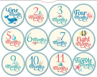Numbered Month Tags, Baby Boy Monthly Growth Tags, Printable Baby Month Tags