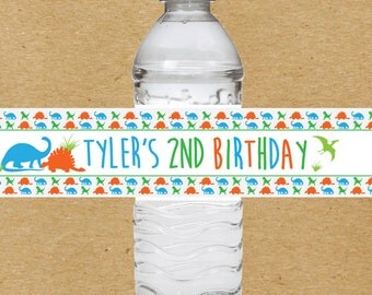 Dinosaur Birthday Water Bottle Labels, Dino Water Bottle Stickers, Personalized Dinosaur Birthday Party Favors