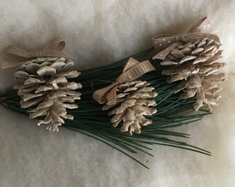 Bleached Pine Cone Ornaments, Set of 3 - Pinecone Ornaments