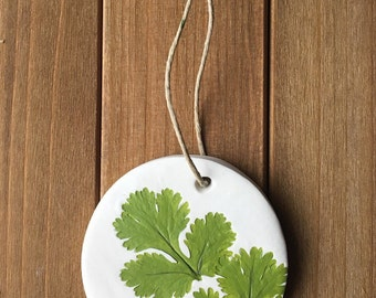 Cilantro ornaments, herbs, kitchen decoration, cooking art, one of a kind, botanical leaf decor, garden leaf imprint, prints