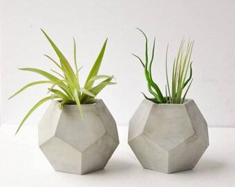 Small Decahedron Planter - Air Plant Planter - Succulent Planter - Concrete Planter