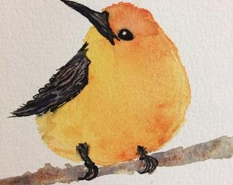 Fat Yellow Bird Watercolor