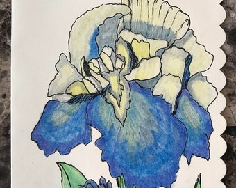 Blue Iris - hand drawn note card with envelope