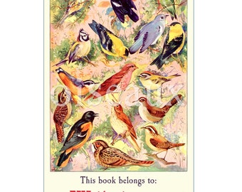 Spring Birds Bookplates - Personalized Vintage Book Labels - Perfect Teacher's Gift, Mother's Day
