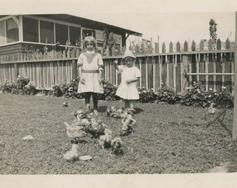 vintage photo 1920 Little Girls Feeding chickens Chicks in Yard