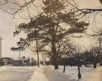 Original Vintage Photograph Snapshot Trees & Path Through Snow 1930s-40s