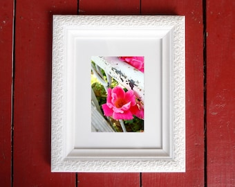 Photograph: Pink Flower Nature Photo 5x7 print