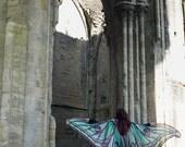 Luna moth cape dance wings costume adult Spanish luna moth cape chiffon belly  halloween burning man