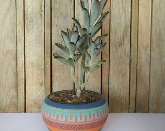 Bohemian colorful planter Ceramic planter succulent planter indoor planter pot  Carved  sgraffito Vase Geo Aztec Geometric boho decor garden