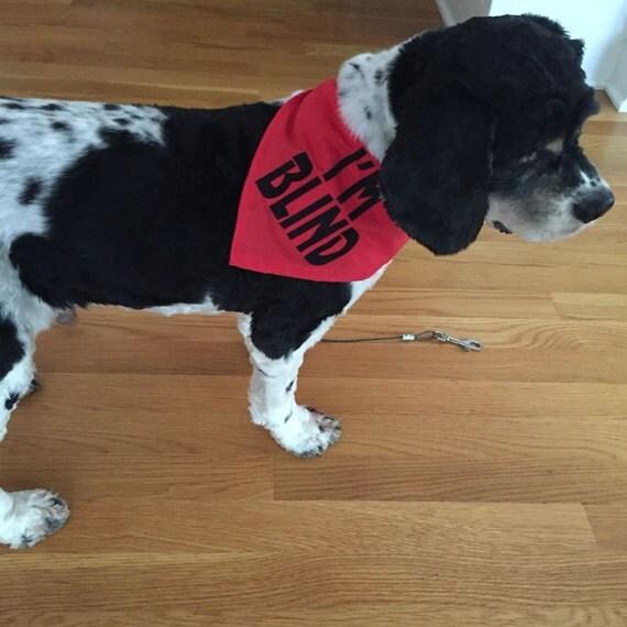 I M Blind Or I M Deaf Dog Bandanas