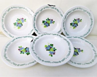 Vintage Enamel Dishes | Mexican Dinnerware | Enamelware Bowls | Set of 6