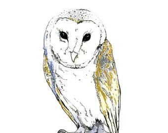 Fine Art Print, Owl Watercolor Painting, Barn Owl Print, Owl Art, Beautiful Barn Owl, Owl Illustration