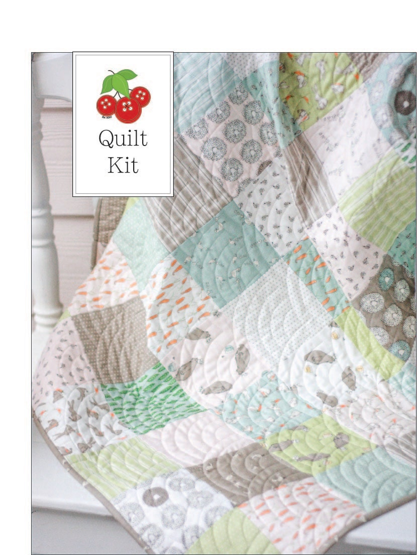Darling Little Dickens Baby Quilt Kit Crib Quilt Kit Small