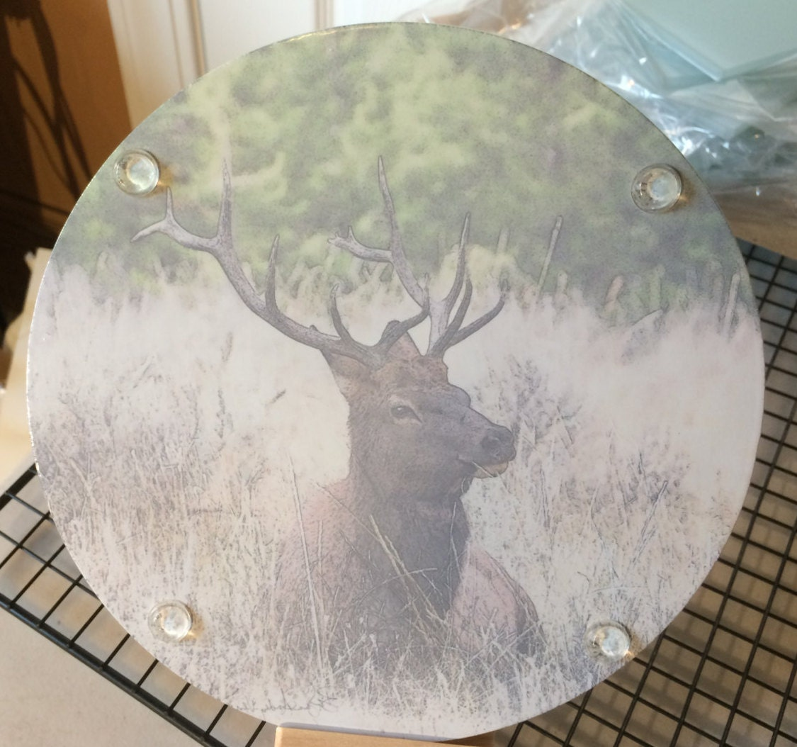 Round Glass Cutting Board Elk Sitting 8 Inch