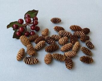 100 small spruce pine cones, 1 inch narrow pines cones, rustic wedding decor, craft supply