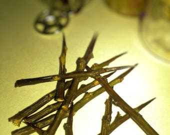 10 English Hawthorn Thorns | Wicca | Witchcraft | Spell craft for protection