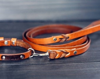 Leash, Leather dog leash, Dog leash, 5/8 inch Wide Braided Leather Lead 4ft 5ft 6ft, Strong leash, Handmade, for Small Dogs, Trigger Clip