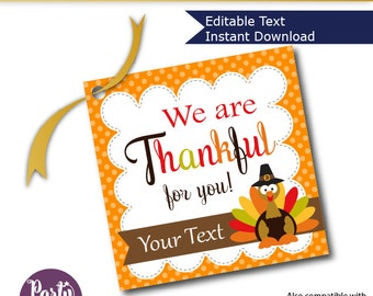 Editable Thanksgiving Favor Tag, Printable We are Thankful for you Label, Gift tag, Holiday Sticker, Instant Download -D783 HOTH1