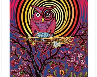 "11""x17"" Owls Nest"