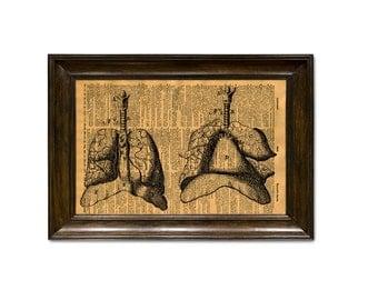 Lungs human Anatomy Print, medical art, human anatomy, science & anatomy art, wall decor
