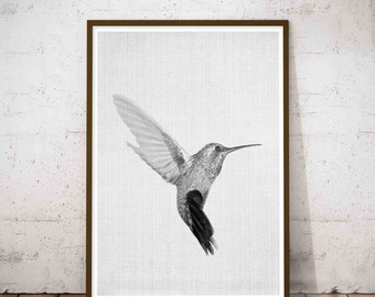 Colibri Wall Art, Colibri Print, Hummingbird Print, Art Printable, Hummingbird Art, Hummingbird Wall Art, Bird Wall Prints, Printable Art