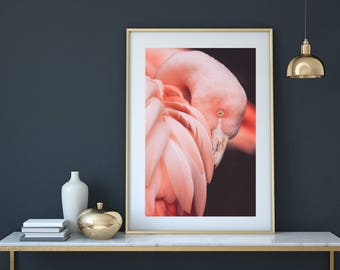 Flamingo print, flamingo art, flamingo, pink flamingo, nursery print, fashion print, flamingo nursery, bird print, flamingo download,