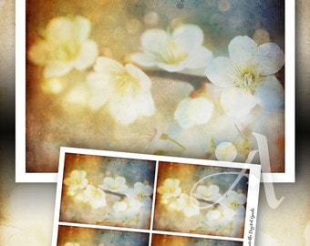 Printable download - GORGEOUS GARDEN SERIES Design No.3 - artwork and greeting cards, for home decor, craft projects, stationery - ArtCult