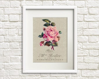 Linen Rose - Botanical Artwork, Floral Art Prints, Farmhouse Chic Style Decor, Rose Flower Print, French Country Decor, Wall Art Home Decor
