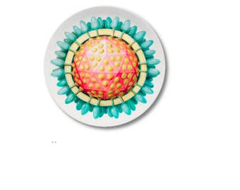 Virus melamine plate