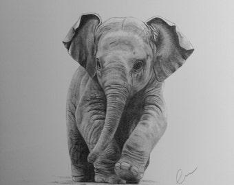 Baby Elephant A3 Print (Ed. 5 of 50)