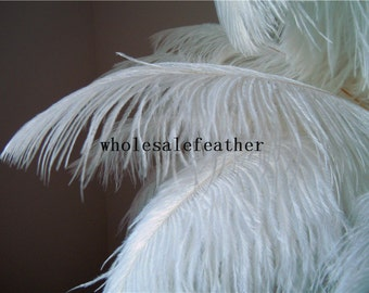 Rush order for 100 pcs WHITE ostrich feather plumes for wedding centerpieces wedding decor
