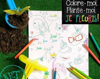 Coloriage Magique, papier ensemencé, coloriage qui fleurit
