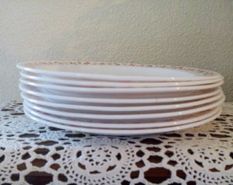 Eight plates arcopal France vintage retro dishes made in France dinner plates plates