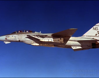 16x24 Poster; F-14 Tomcat P2