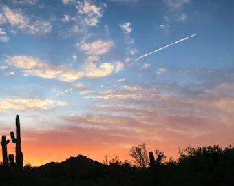 Colorado River Sunset over the Saguaro Horizon