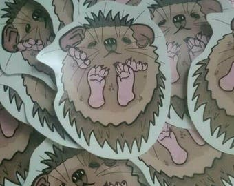 Single Cute Lil kawaii hedgehog high quality vinyl sticker 9x7cm