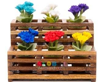 Dollhouse Miniatures Colorful Geranium Flower in Flowerpot on Wooden Shelf